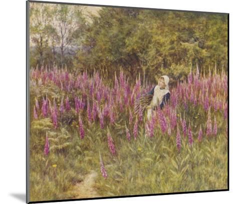 Girl Gathering Sticks in Kent Walks Through a Mass of Foxgloves-Helen Allingham-Mounted Giclee Print