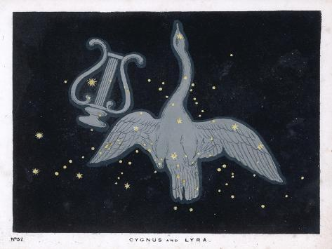 The Constellation of Cygnus, a Flying Swan, and Lyra, That of an Ancient Greek Lyre-Charles F^ Bunt-Stretched Canvas Print