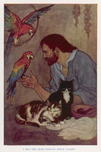 Robinson Crusoe with His Parrots and Cats-Elenore Plaisted Abbott-Stretched Canvas Print