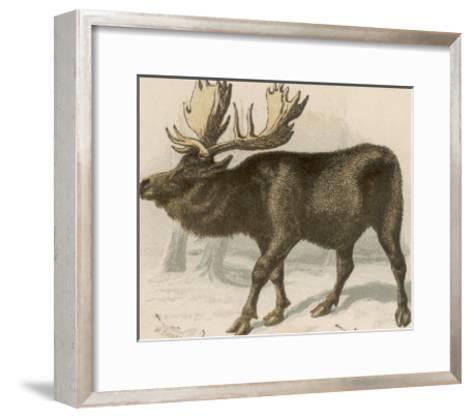 Moose or Elk--Framed Art Print