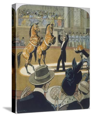 The Trainer Makes His Pair of Bay Horses Rear up in Front of the Audience-Rasmus Christiansen-Stretched Canvas Print