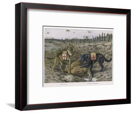 Two Red Cross Rescue Dogs a German Shepherd-Louis Agassiz Fuertes-Framed Art Print