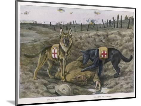 Two Red Cross Rescue Dogs a German Shepherd-Louis Agassiz Fuertes-Mounted Giclee Print