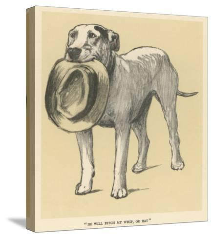 Dog Trained to Fetch His Master's Hat-Cecil Aldin-Stretched Canvas Print