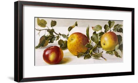 Apples and a Bit of Foliage- Moettler-Framed Art Print
