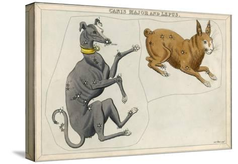 Canis Major (Dog) and Lepus (Hare) Constellation-Sidney Hall-Stretched Canvas Print