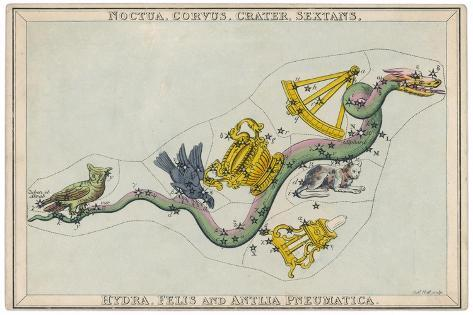 Hydra Constellation Including an Owl a Raven and a Sextant-Sidney Hall-Stretched Canvas Print