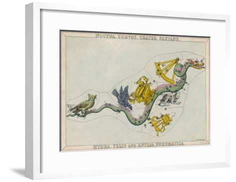 Hydra Constellation Including an Owl a Raven and a Sextant-Sidney Hall-Framed Art Print
