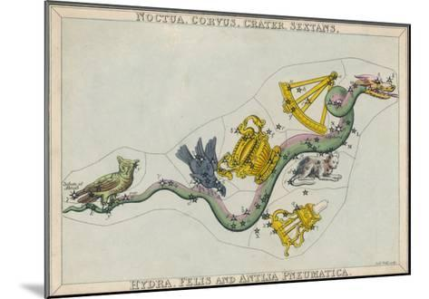 Hydra Constellation Including an Owl a Raven and a Sextant-Sidney Hall-Mounted Giclee Print