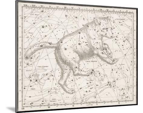 The Ursa Major--Mounted Giclee Print
