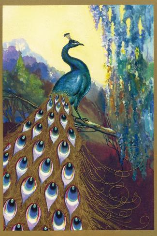 Ornamental Peacock--Stretched Canvas Print