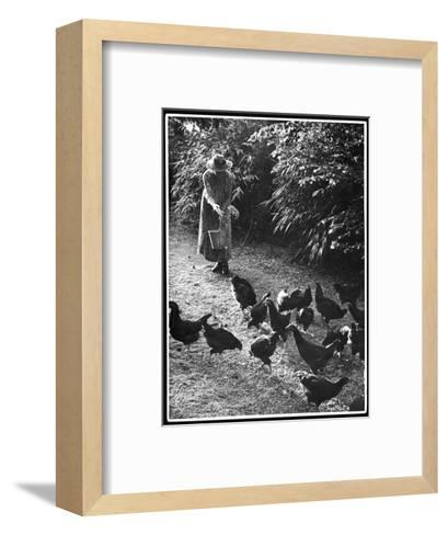 An Older Woman in a Long Dress and Wide-Brimmed Hat Throws Handfuls of Chicken Feed--Framed Art Print
