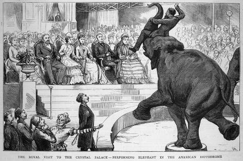 Performing Elephant Entertains the Crowd During a Circus Performance at the Crystal Palace--Stretched Canvas Print
