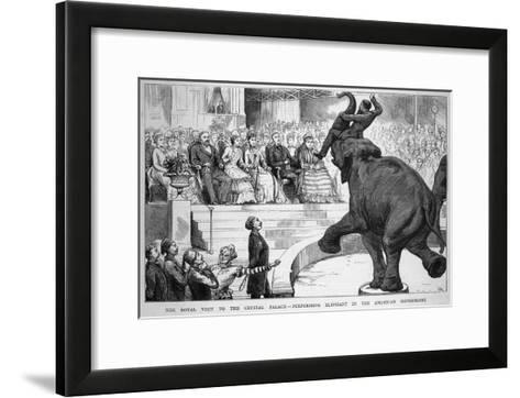 Performing Elephant Entertains the Crowd During a Circus Performance at the Crystal Palace--Framed Art Print