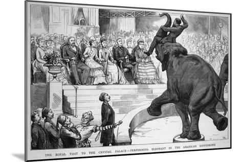 Performing Elephant Entertains the Crowd During a Circus Performance at the Crystal Palace--Mounted Giclee Print