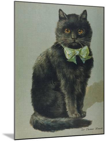 Handsome Black Cat Sir Thomas Mouser Sits Posed with a Green Ribbon Around His Neck--Mounted Giclee Print