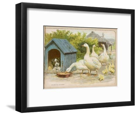 Geese and a Kenneled Dog--Framed Art Print