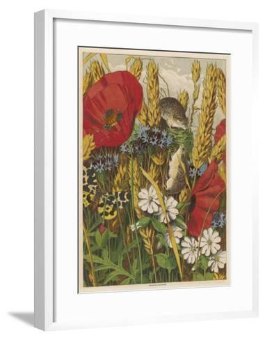 Two Harvest Mice Among the Ears of Corn and Poppies--Framed Art Print