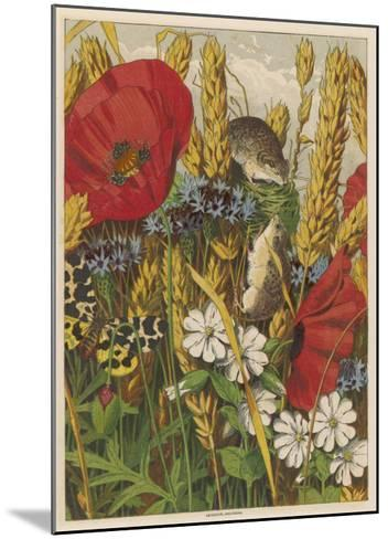 Two Harvest Mice Among the Ears of Corn and Poppies--Mounted Giclee Print