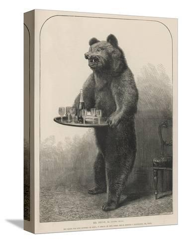 Bear Waiter--Stretched Canvas Print