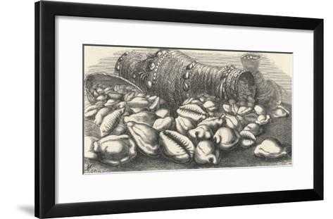 Money-Cowries-J.g. Wood's-Framed Art Print