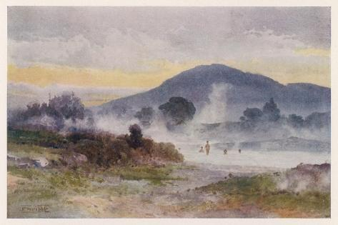 Hot Pools Near Ngongotaha Mountain-F. Wright-Stretched Canvas Print