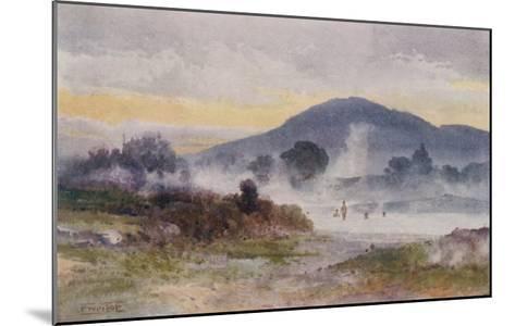 Hot Pools Near Ngongotaha Mountain-F. Wright-Mounted Giclee Print