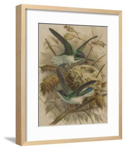 Two Green Birds Nest Building--Framed Art Print
