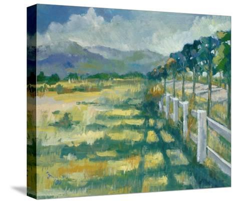 Summer Day-Oyang Counfu-Stretched Canvas Print