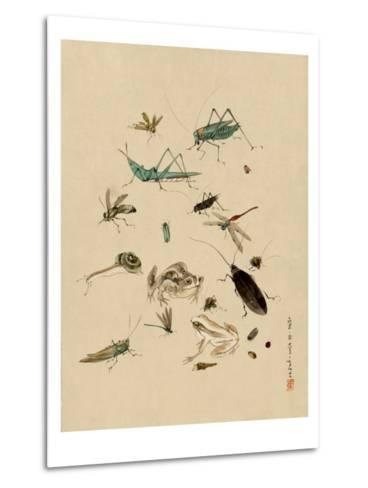 Insects and Toads--Metal Print