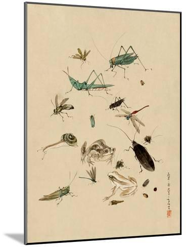 Insects and Toads--Mounted Art Print