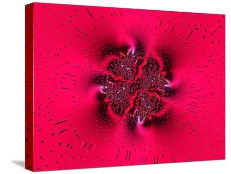 Pink Abstract Pattern-Albert Klein-Stretched Canvas Print