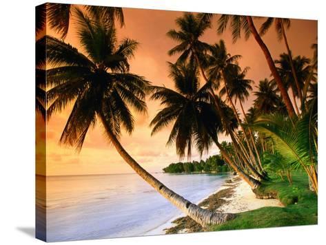 Blue Lagoon Resort Beach, Weno Centre, Micronesia-John Elk III-Stretched Canvas Print