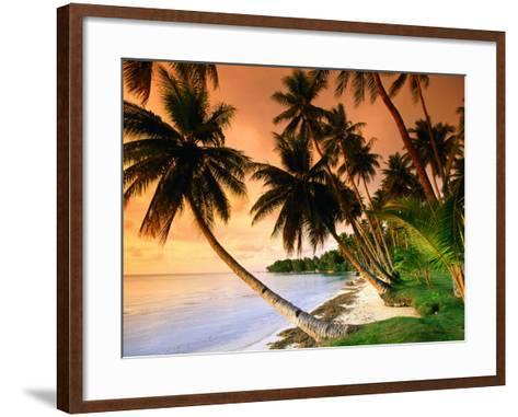 Blue Lagoon Resort Beach, Weno Centre, Micronesia-John Elk III-Framed Art Print