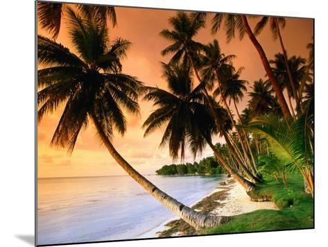 Blue Lagoon Resort Beach, Weno Centre, Micronesia-John Elk III-Mounted Photographic Print