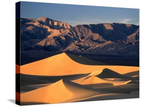 Sand Dunes and Mountain Range, Death Valley National Park, California, USA-Mark Newman-Stretched Canvas Print