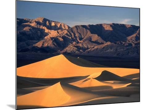 Sand Dunes and Mountain Range, Death Valley National Park, California, USA-Mark Newman-Mounted Photographic Print