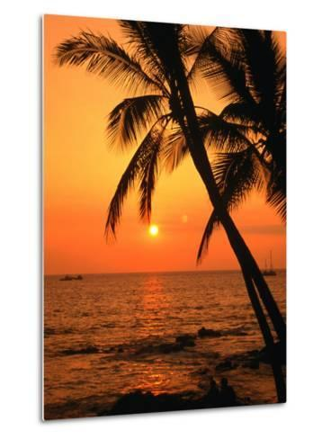 A Couple in Silhouette, Enjoying a Romantic Sunset Beneath the Palm Trees in Kailua-Kona, Hawaii-Ann Cecil-Metal Print