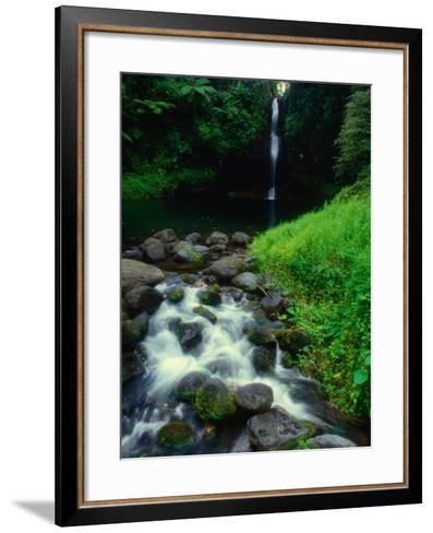 Water Streaming Over Rocks at Olemoe Waterfall, Olemoe Falls, Samoa-Tom Cockrem-Framed Art Print
