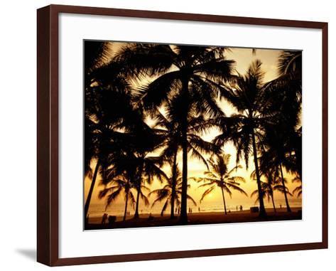 Palms in Evening on Kovalam Beach, Kovalam, Kerala, India-Greg Elms-Framed Art Print