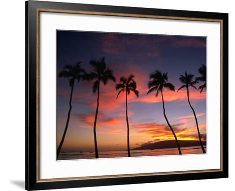 Coconut Palms and the Island of Lanai at Sunset from the Seawall on Front Street, Lahaina, Maui-Karl Lehmann-Framed Art Print