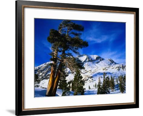 Snow Covered Mountain in Sierra Nevada, California, USA-Rob Blakers-Framed Art Print