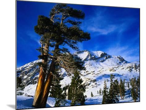Snow Covered Mountain in Sierra Nevada, California, USA-Rob Blakers-Mounted Photographic Print