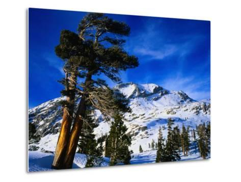 Snow Covered Mountain in Sierra Nevada, California, USA-Rob Blakers-Metal Print