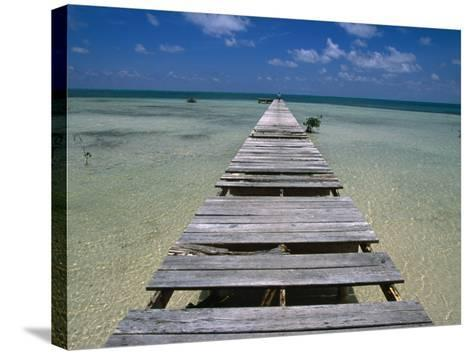 Wooden Pier with Broken Planks, Ambergris Caye, Belize-Doug McKinlay-Stretched Canvas Print