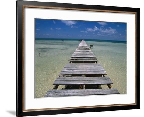 Wooden Pier with Broken Planks, Ambergris Caye, Belize-Doug McKinlay-Framed Art Print