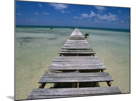 Wooden Pier with Broken Planks, Ambergris Caye, Belize-Doug McKinlay-Mounted Photographic Print