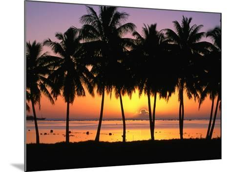 Palm Trees at Sunset, Cook Islands-Peter Hendrie-Mounted Photographic Print