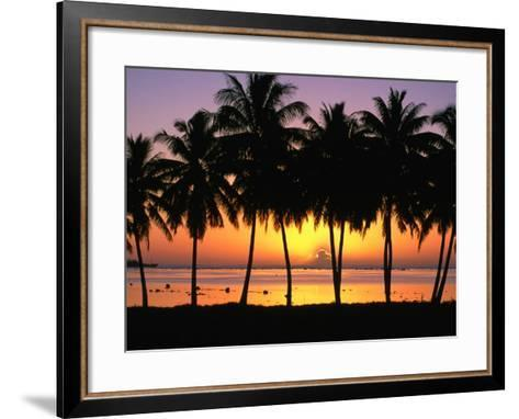 Palm Trees at Sunset, Cook Islands-Peter Hendrie-Framed Art Print
