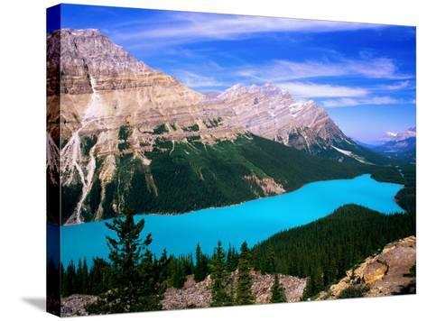 Overhead of Peyto Lake and Mountains, Summer, Banff National Park, Canada-David Tomlinson-Stretched Canvas Print